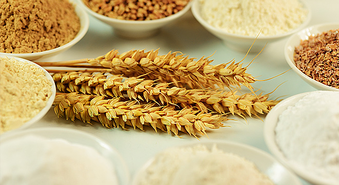 Functional raw materials made from wheat, for efficient and sustainable livestock feeding